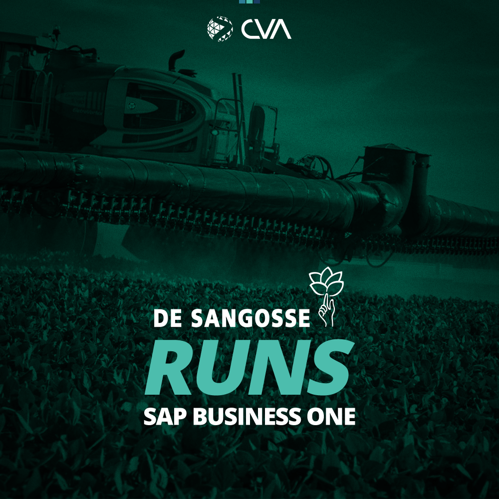 De Sangosse RUN SAP BUSINESS ONE